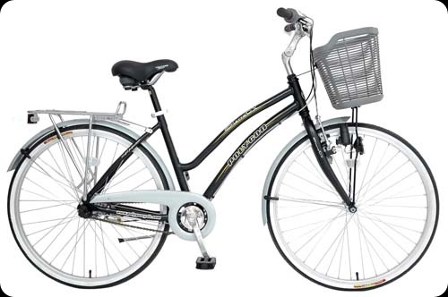 Specialbike-sierradx