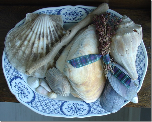Seashells and Heather