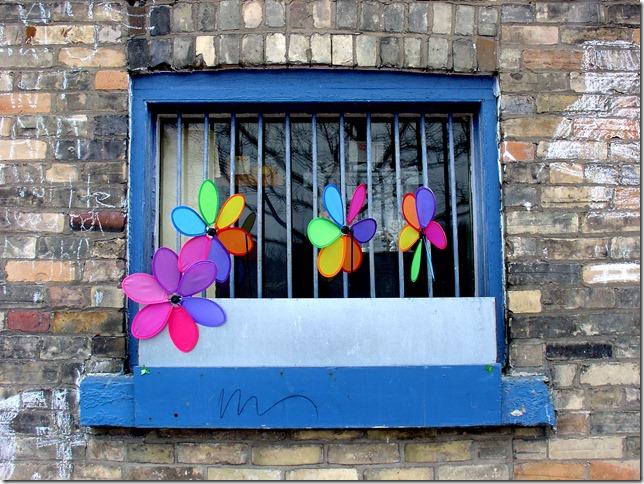 The window at York Street Kitchen