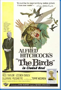 the-birds2