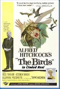the-birds2