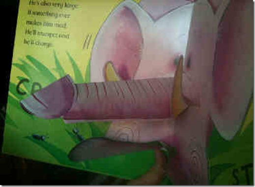 libro elefante