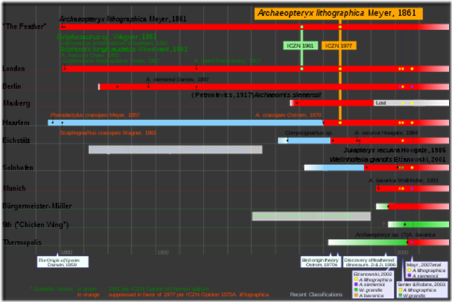480px-Archaeopteryx_timeline_svg