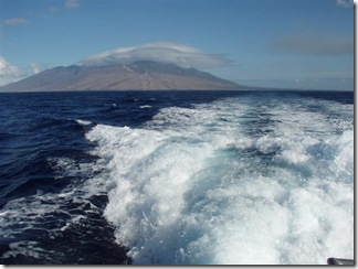 Maui Snorkeling_10 (1) (Medium)