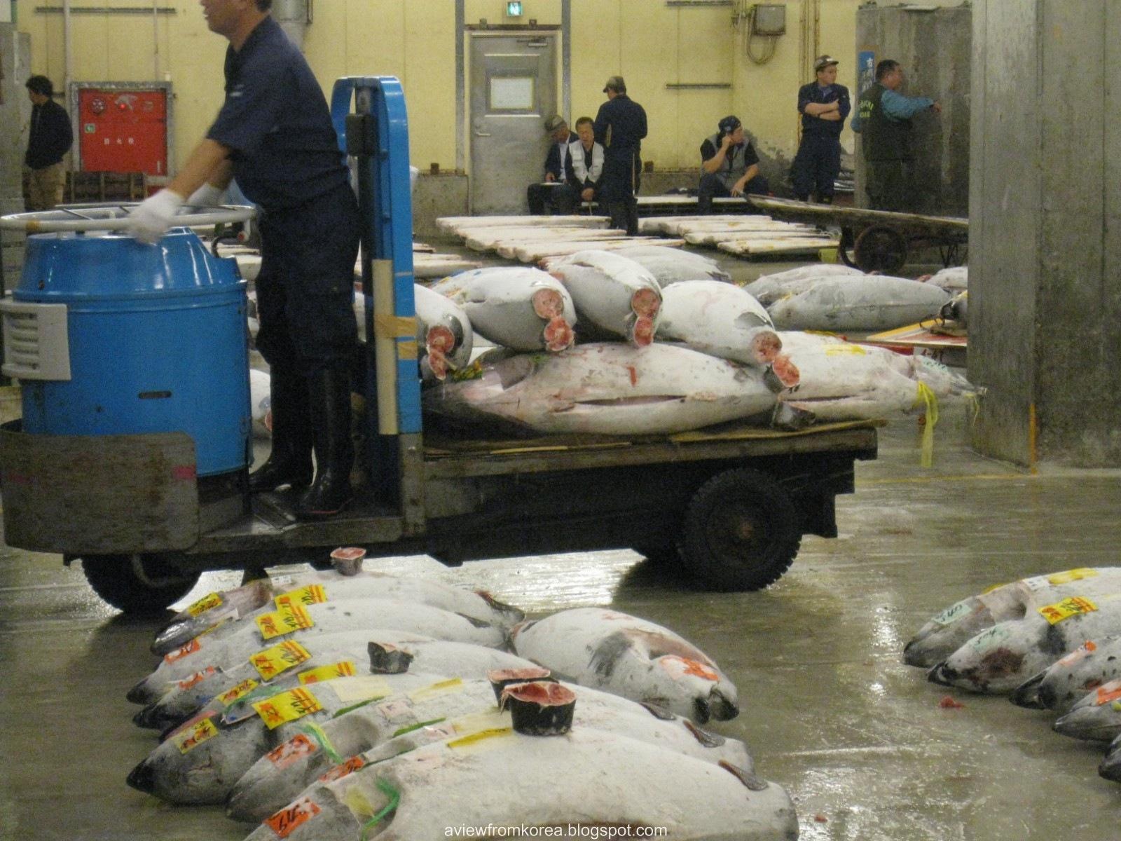 [Tsukiji Fish Market_07 [1600x1200][2].jpg]