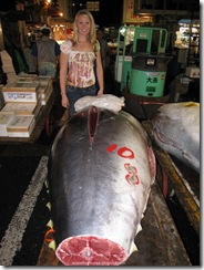 Tsukiji Fish Market_14 [1600x1200]