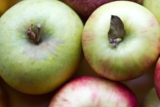 Apples not recipes
