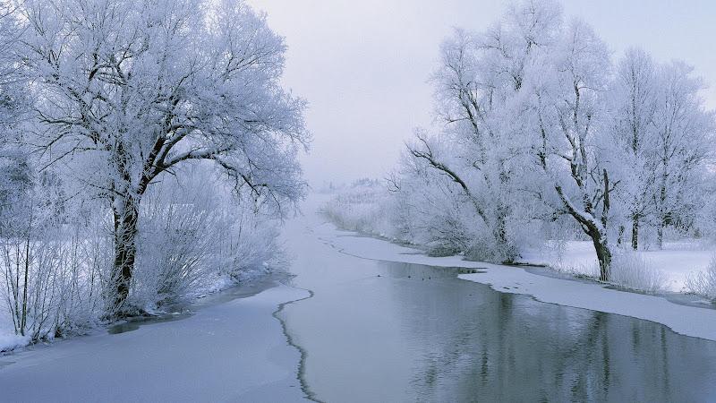 Winter%20White%20Wonderland