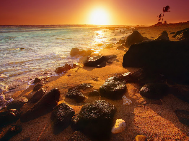 Shoreline%20Sunset%2C%20Hawaii