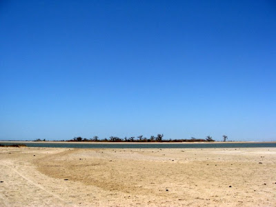 Landscape in Palmarin Senegal