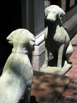 Stone dogs in Boston