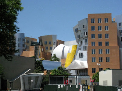 Frank Gehry building at MIT