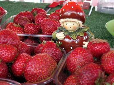 Strawberries for sale at the market in Helsinki Finland