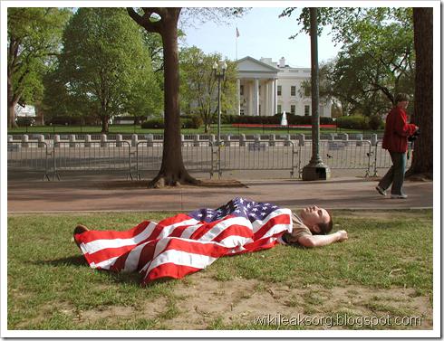 США Белый дом. Vikiliks Video. Викиликс Фото WikiLeaks