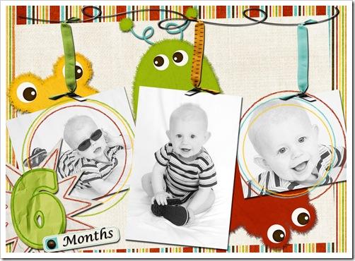 6 months copy