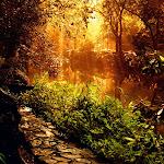 Beautyful Landscape (21).jpg