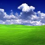 Beautyful Landscape (42).jpg