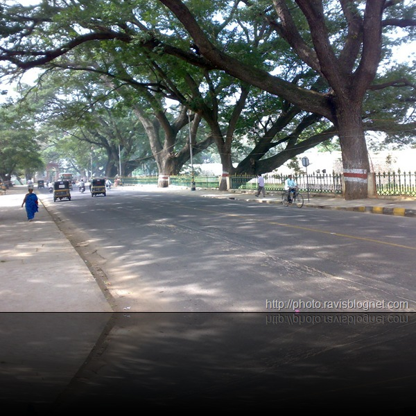 Mysore_Pics_2