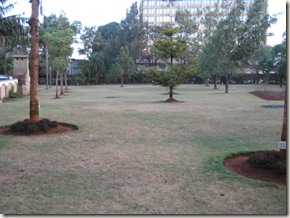 "my track ( the ""garden"" at Sirikwa)"