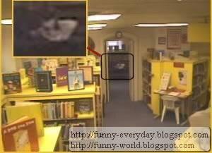 Willard Library (5)