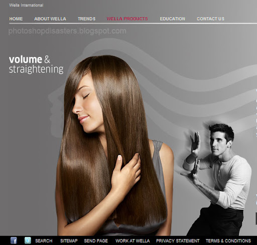 Wella PSD