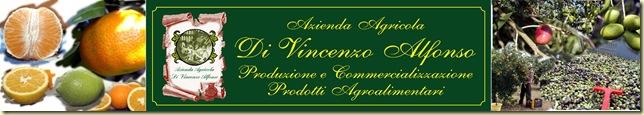 Logo internet leggero di vincenzo