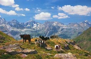 britannica pyrenees