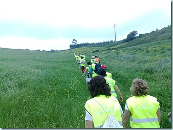 3 - Caminhar pelos campos