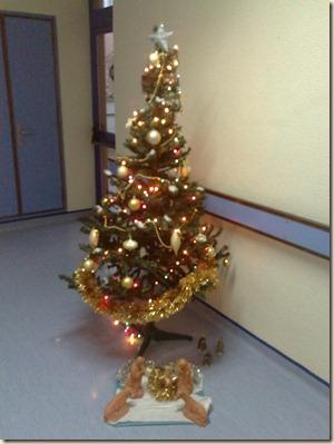 Natal dos hospitais (6)