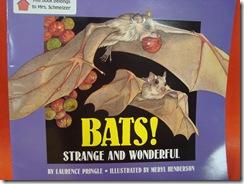Bats, Bats, Bats 027
