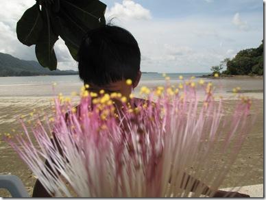 KAw Kaang Flower, Lanta