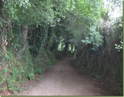 Camino 09 122