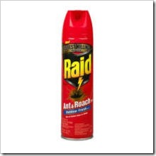 raid_can