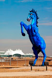 blue mustang.jpg