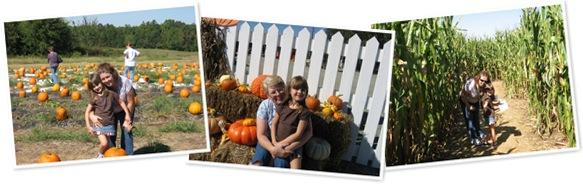 View Pumpkin Patch