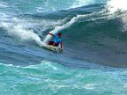 Hawaii Surfing - hawaii five o