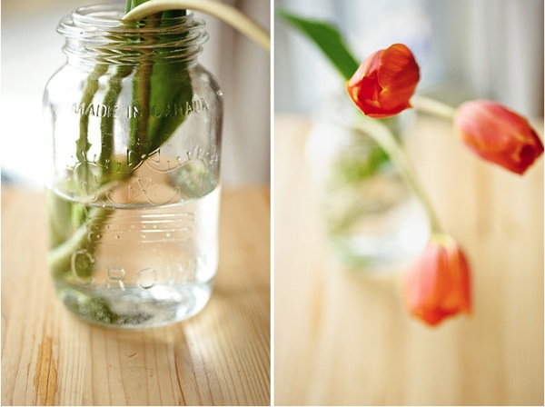 Tulips and Jar