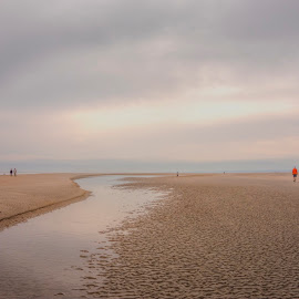 Coming and Going by David Stone - Landscapes Beaches ( water, sand, beach walkers, sky, reflections, sunrise, crane beach, beach )