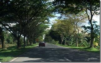 Santubong_Mountain_Kuching_Sarawak_02