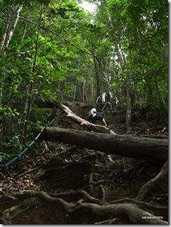 Santubong_Mountain_Kuching_Sarawak_04
