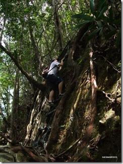 Santubong_Mountain_Kuching_Sarawak_11