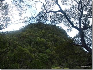 Santubong_Mountain_Kuching_Sarawak_55