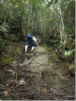 Santubong_Mountain_Kuching_Sarawak_53