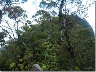 Santubong_Mountain_Kuching_Sarawak_51
