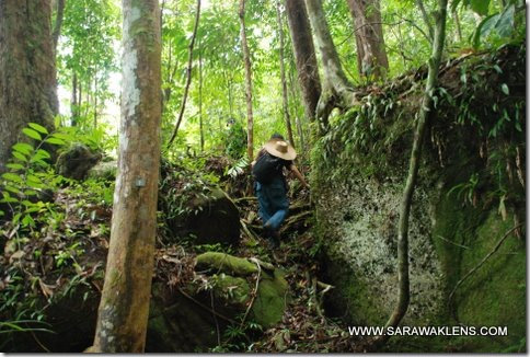 hiking_in_Santubong_07