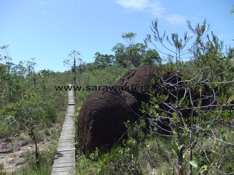 Bako_National_Park_adventure_07