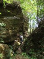 Teluk_Limau_trail_Bako_National_Park_65