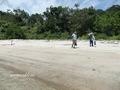 Teluk_Limau_beach_Bako_National_Park_78