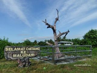Maludam_Sarawak_07