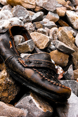 pantoful cu pietre - shoe with stones